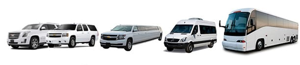 Los Cabos Airport Transportation to Marquis