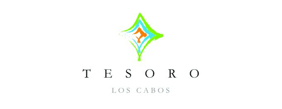 SJD Cabo Airport to Tesoro